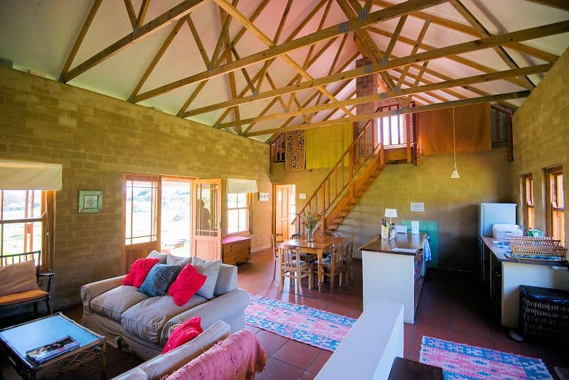 pet-friendly-farm-accommodation-012