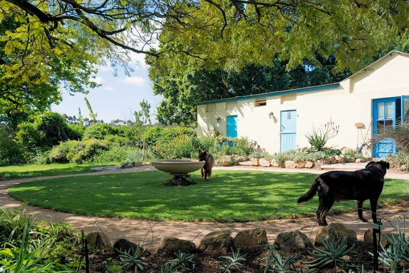 pet-friendly-farm-cottage-009
