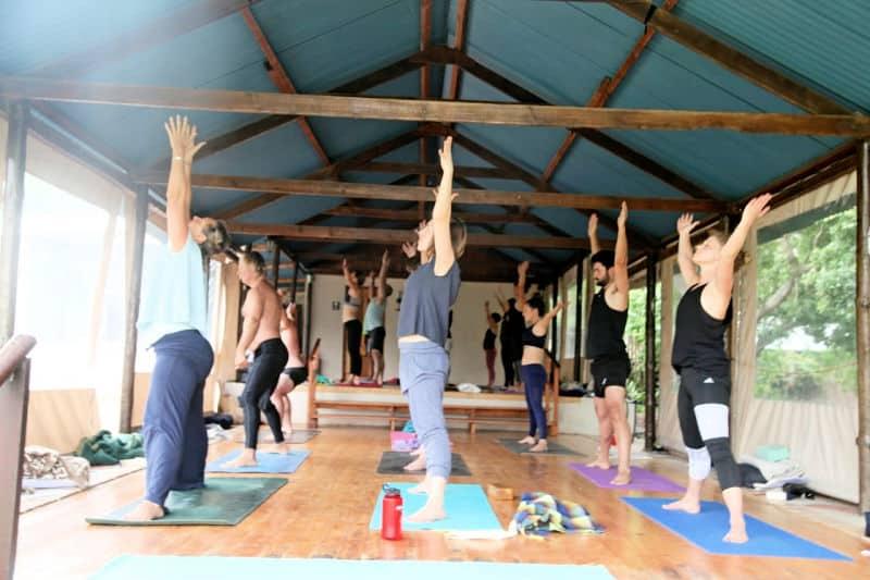 Elaine Seidel's Fusion Vinyasa Yoga Retreat at Fynbos Estate