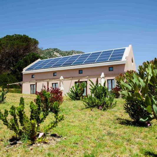 Eco-friendly house with an indigenous fynbos garden