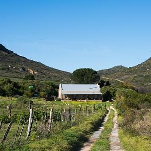 Selfcatering guest farm accommodation near Cape Town on a Swartland Wine Estate